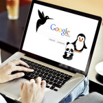 Google Algorithm Updates – What you Need to Know